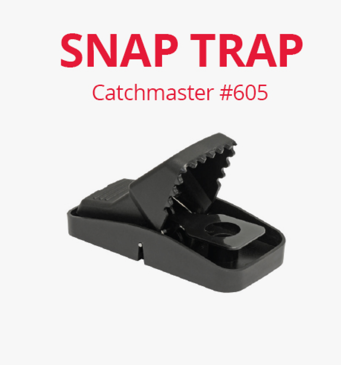 how to set catch master rat trap