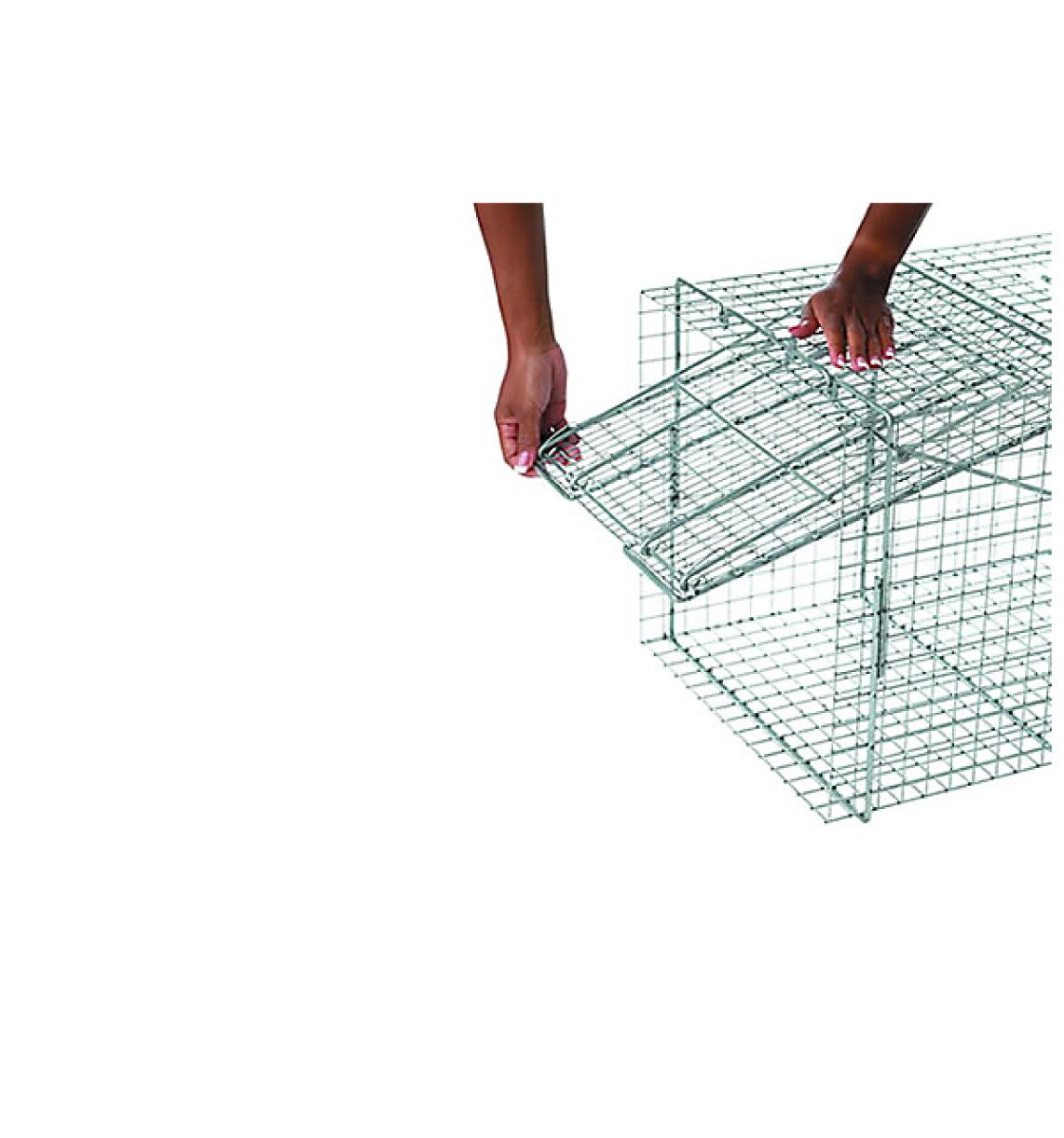 Havahart X Large 1 Door Trap Dog Foxes 1081 Ecovar